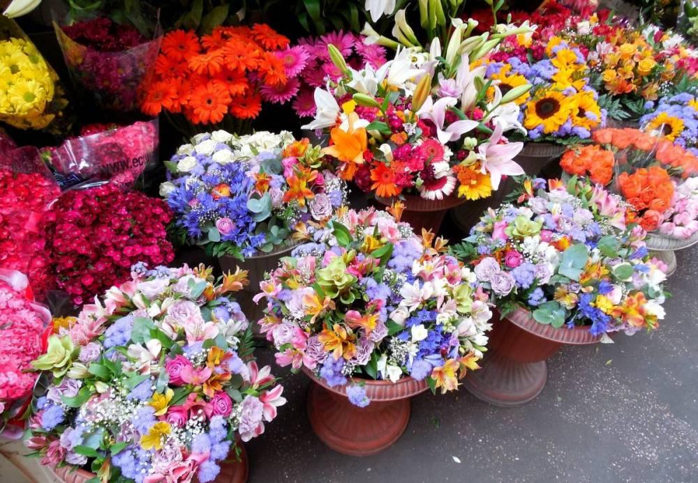 flowers-1252028_1920